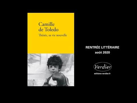 Thésée, sa vie nouvelle de Camille de Toledo 2